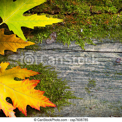 art autumn leaves on the grunge old wood background - csp7608785