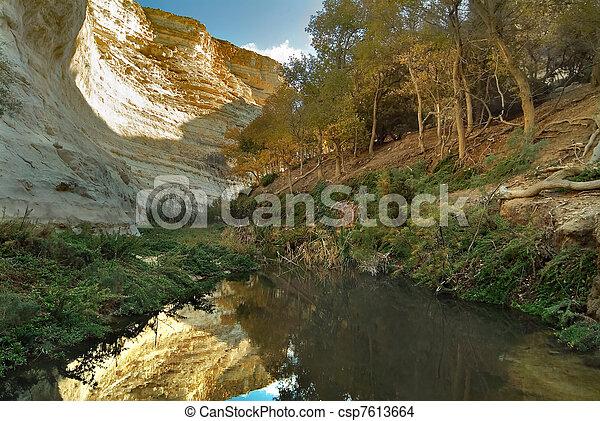 Trees at water - csp7613664