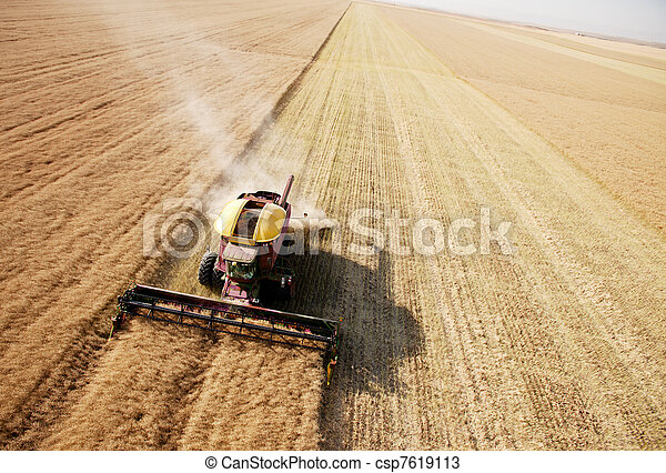 Aerial View of Harvest in Field - csp7619113