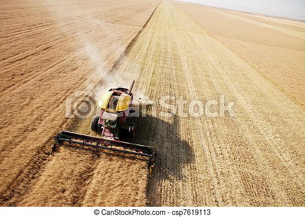 colheita, campo, aéreo, vista - csp7619113