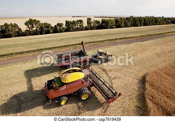 Harvester with Grain Cart - csp7619439