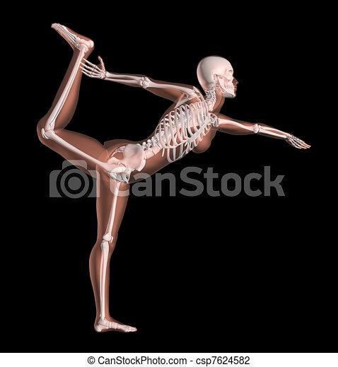 Female Skeleton in Yoga Position - csp7624582