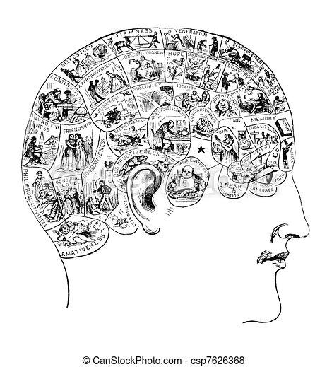 Vintage Phrenology Illustration - csp7626368