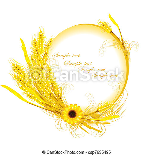 sunflower with wheat decoration  - csp7635495