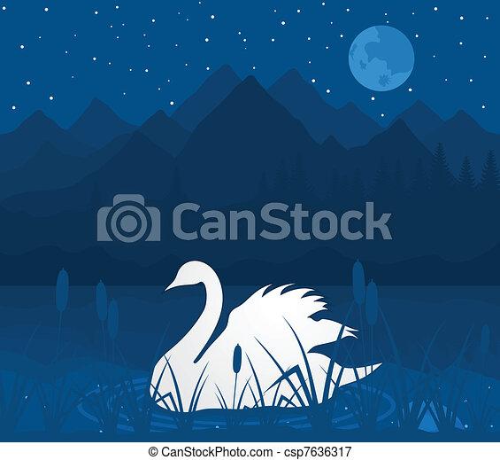 White swan - csp7636317