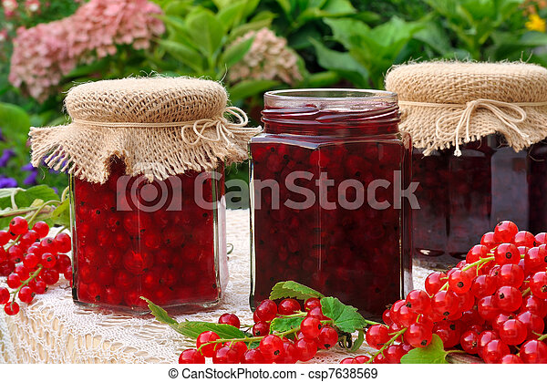 Jars of homemade red currant jam with fresh fruits - csp7638569