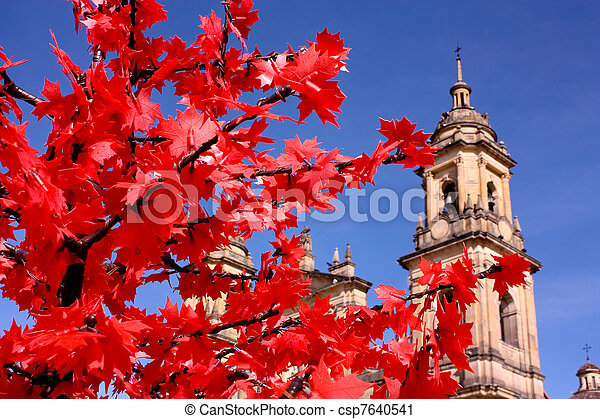 Cathedral of Bogota, Colombia - csp7640541