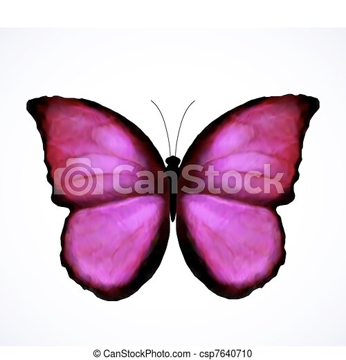 Bright Pink Butterfly Isolated. Vector - csp7640710