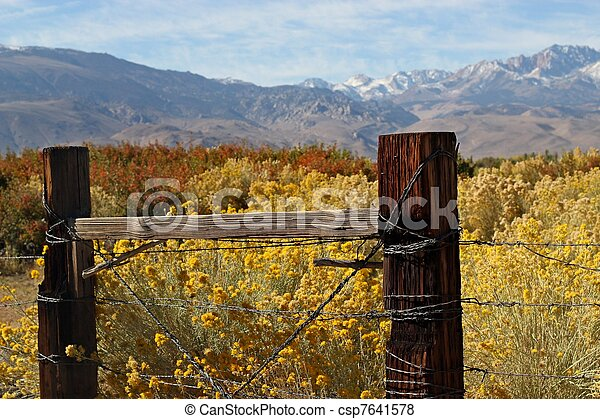 Boundaries of an Eastern Sierra Ranch - csp7641578