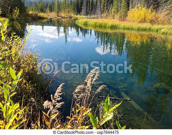 Fall sky mirrored on calm clear taiga wetland pond - csp7644475