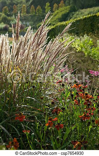 autumn vegetation - csp7654930
