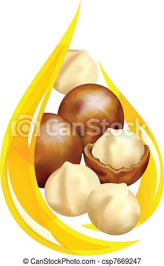 Macadamia oil. Stylized drop. - csp7669247