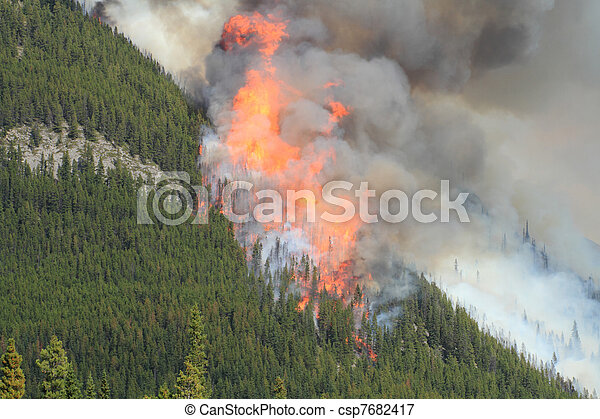 Forest Fire in the Rocky Mountains 09 - csp7682417