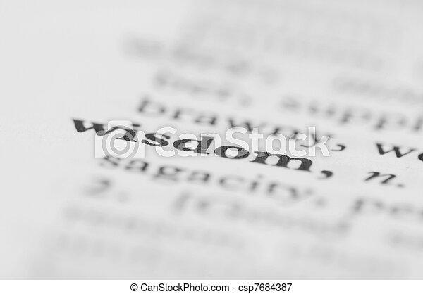 Dictionary Series - Wisdom - csp7684387