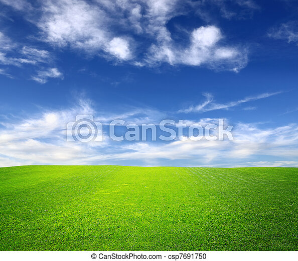 Green field and blue sky - csp7691750