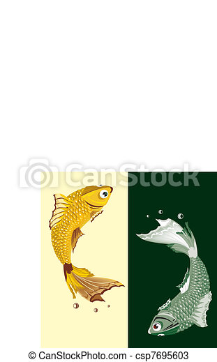 Two freshwater fish - csp7695603