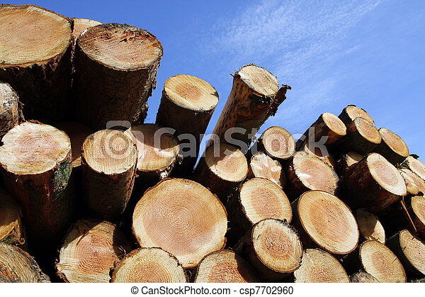 Stockpile of logging timber  - csp7702960