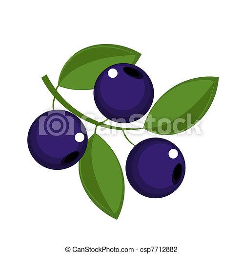 Blueberry - csp7712882