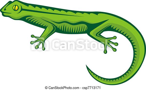 Green lizard - csp7713171