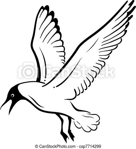 seagull - csp7714299