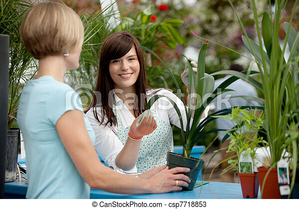Worker and Customer in Greenhouse - csp7718853