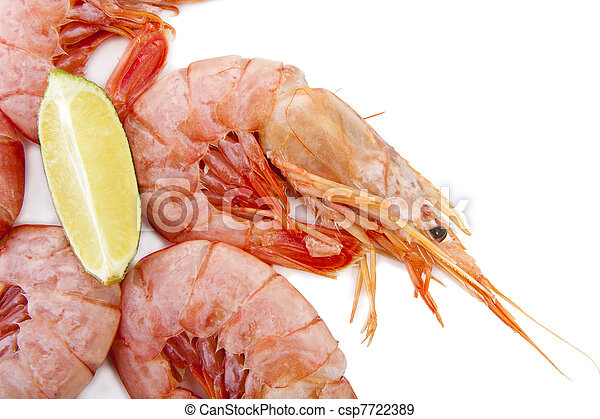 fresh seafood, shrimps and crustaceans - csp7722389