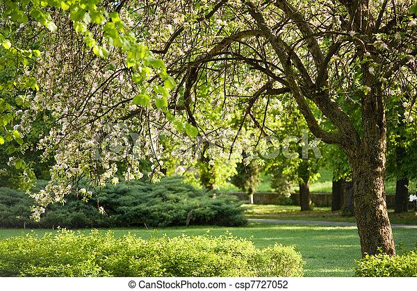Spring scenery. - csp7727052