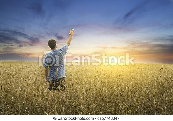 Man on yellow wheat meadow.  - csp7748347