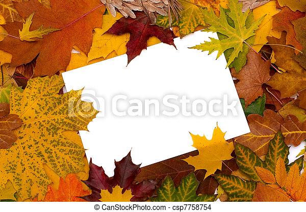 otoño, hojas, Plano de fondo - csp7758754