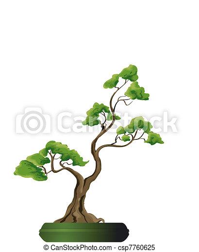 Vecteur clipart de bonsai vecteur arbre csp7760625 - Dessin bonzai ...