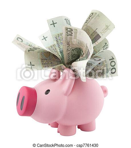 Piggy bank with polish money - csp7761430