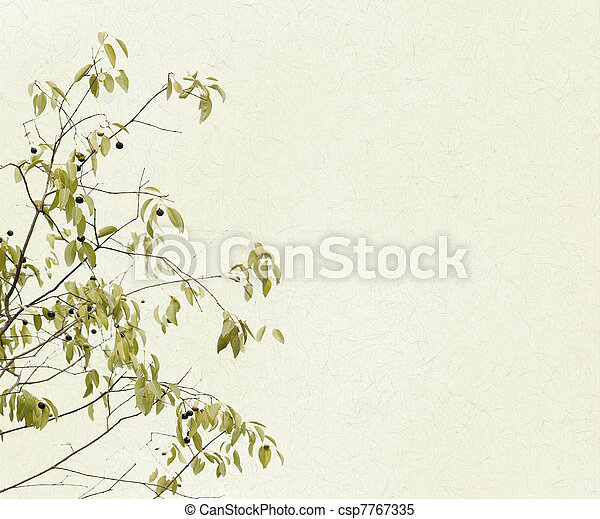 Delicate Branches of Leaves and Berries - csp7767335