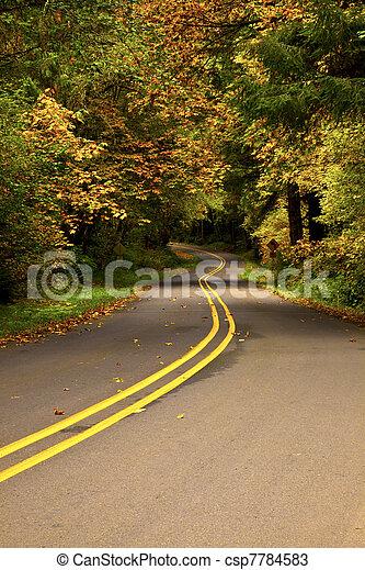 Winding Road - csp7784583
