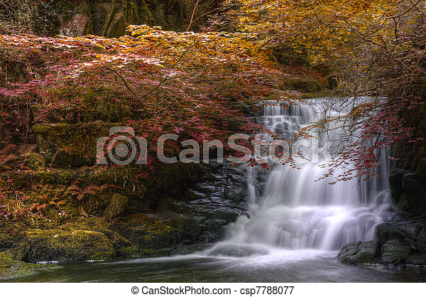 Waterfall flowing through Autumn Fall forest landscape - csp7788077