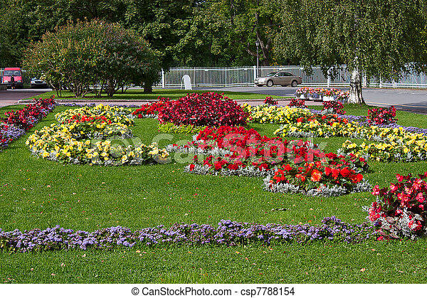 photo de parterre fleurs fleurs et herbe dans fleur lit csp7788154 recherchez des. Black Bedroom Furniture Sets. Home Design Ideas