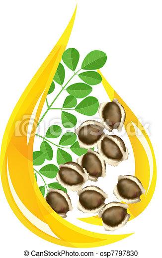 Moringa oleifera oil. Stylized drop. - csp7797830