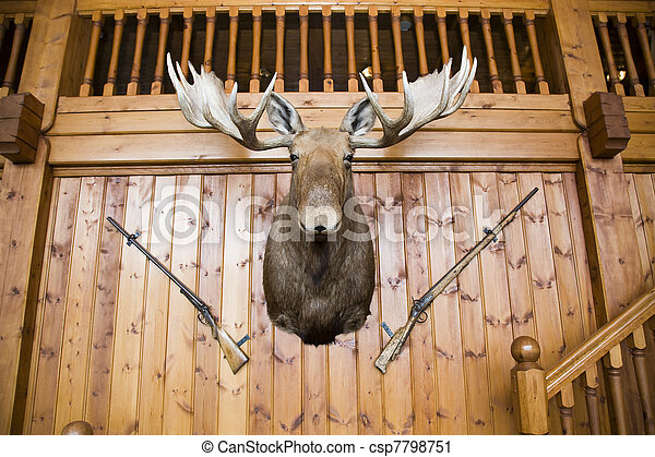 Moose head and guns on wall - csp7798751