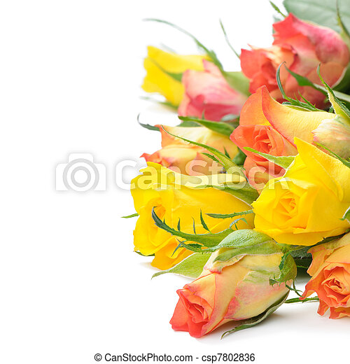 Bouquet of multicolored roses - csp7802836