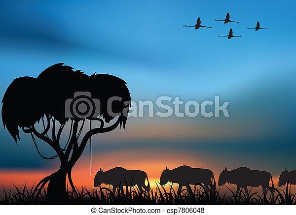 African savanna - csp7806048