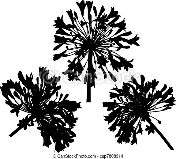 Three Round Flowers Silhouette - csp7808314