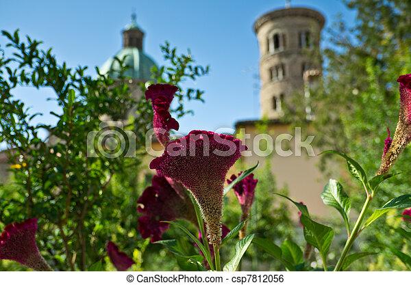 Purple Flowering Shrub - csp7812056