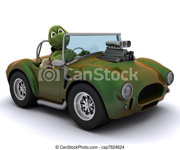 tortoise driving a car - csp7824624