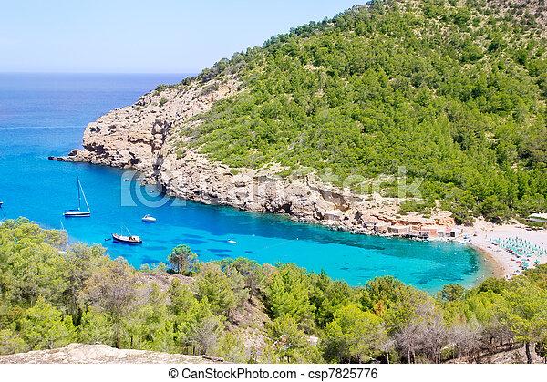 Ibiza Port de Benirras beach turquoise color - csp7825776