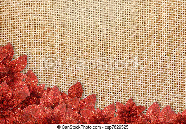 rustic background Christmas poinsettias - csp7829525