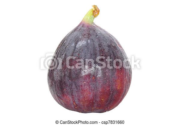 Fresh fig fruit isolated on white - csp7831660