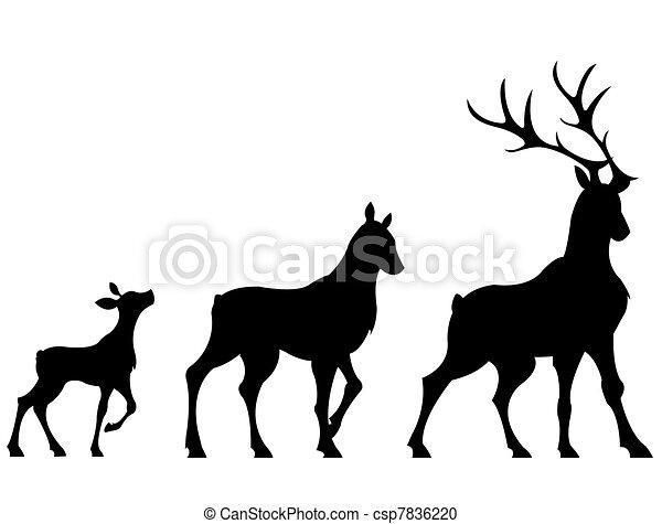 Deers - csp7836220