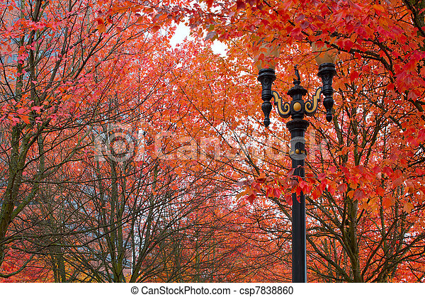 Fall Colors at Portland Oregon Downtown City Park - csp7838860