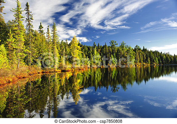 Forest reflecting in lake - csp7850808