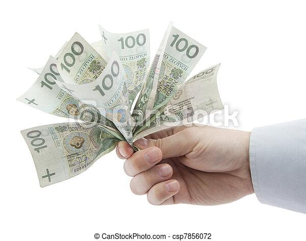 Polish money in hand - csp7856072