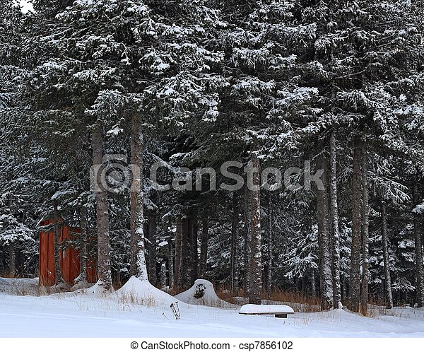 Outhouse and bench in the snow - csp7856102